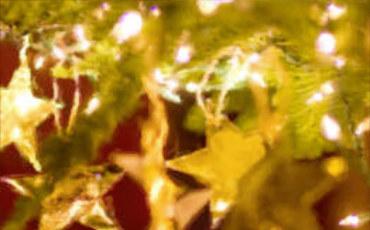 Boston Christmas pl thumb.jpg